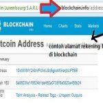 Cara Cek Saldo Bitcoin tanpa Login