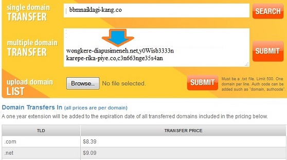 namesilo domain list
