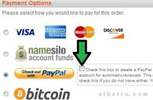 pembayaran domain dengaaaan #paypal